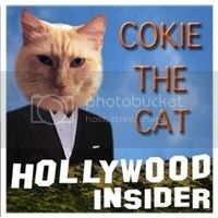 Cokie the Cat button